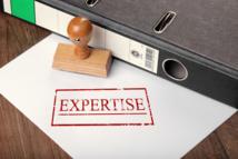 Expert de l'article 1843-4 du Code civil : chercher (et trouver) l'erreur