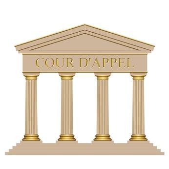 Représentation en justice d'une AARPI : un arrêt étonnant sème le doute