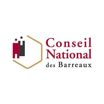 Commission Statut Professionnel de l'Avocat du Conseil national des barreaux : point d'étape (1/5: les litiges professionnels)