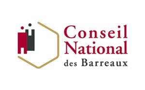 Commission Statut Professionnel de l'Avocat du Conseil national des barreaux : point d'étape (2/5: le renforcement de la juridiction du bâtonnier)